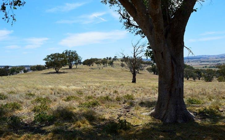 Lot 4 / 94 Old Cootamundra Road, Cootamundra, NSW, 2590 - Image 1