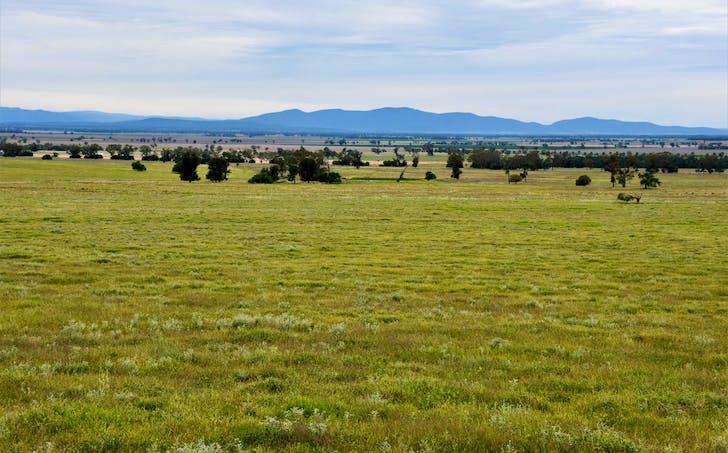 1056 Glencoe Rd, Gunnedah, NSW, 2380 - Image 1