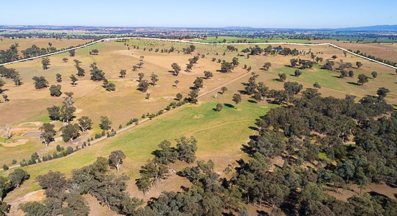 1228 Jerrybang Lane, Monteagle Via, Young, NSW, 2594 - Image 21