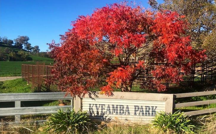 6104 Tumbarumba Road, Kyeamba, NSW, 2650 - Image 1