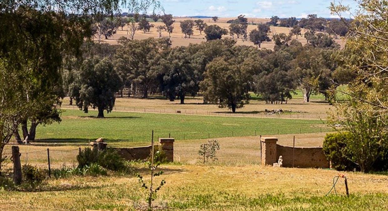 1228 Jerrybang Lane, Monteagle Via, Young, NSW, 2594 - Image 3