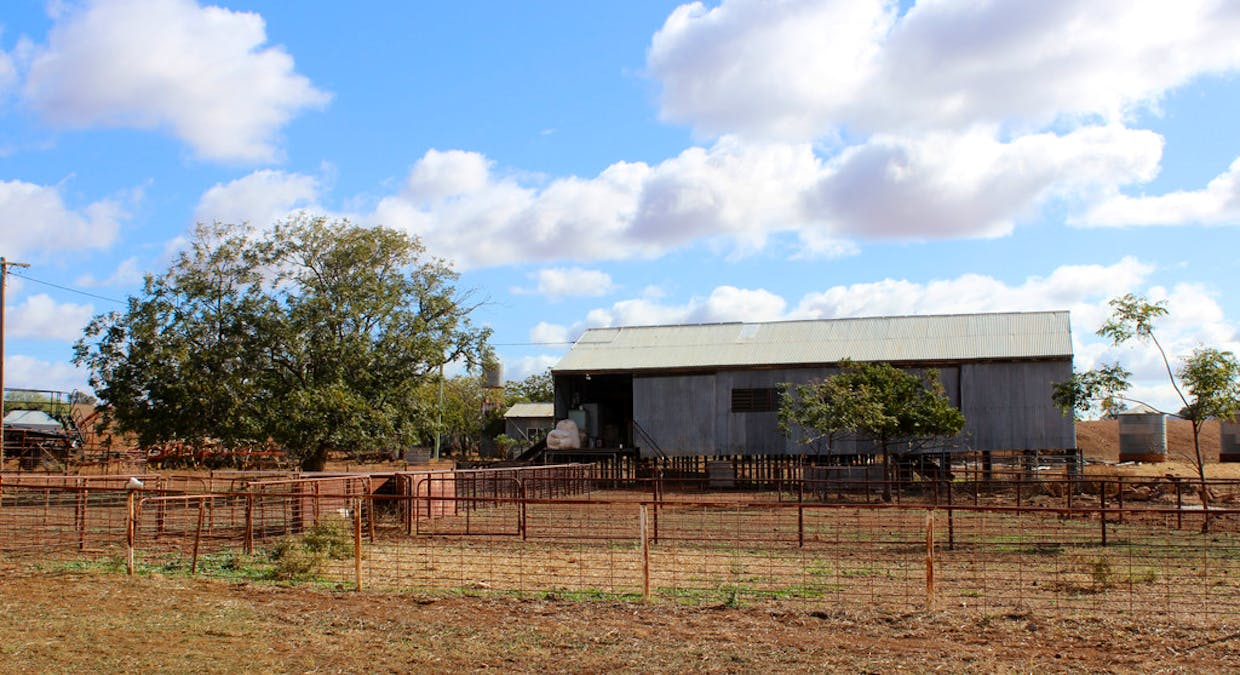 2044 Grassmere Road, Condobolin, NSW, 2877 - Image 16