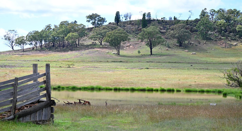 'Bunndarra And Towealgra' Digilah West Road, Dunedoo, NSW, 2844 - Image 1