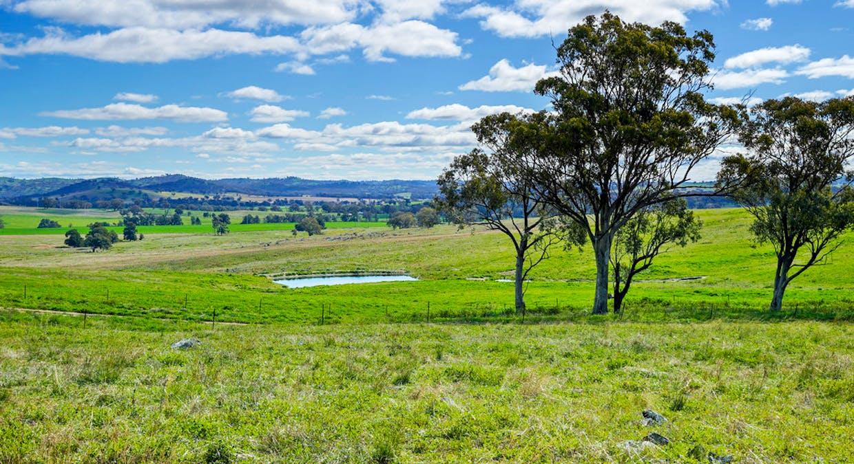 Goolma, NSW, 2852 - Image 16