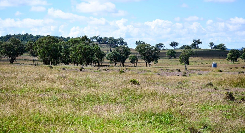 'Bunndarra And Towealgra' Digilah West Road, Dunedoo, NSW, 2844 - Image 18