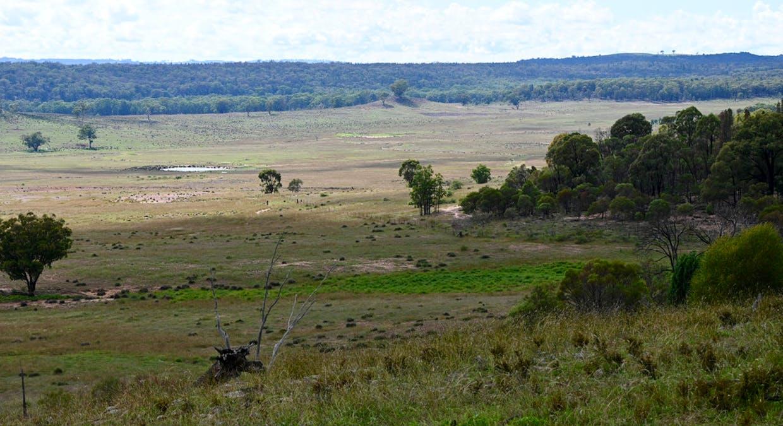 'Bunndarra And Towealgra' Digilah West Road, Dunedoo, NSW, 2844 - Image 10