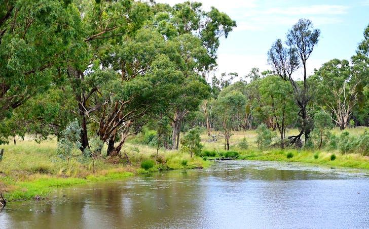 Mendooran, NSW, 2842 - Image 1
