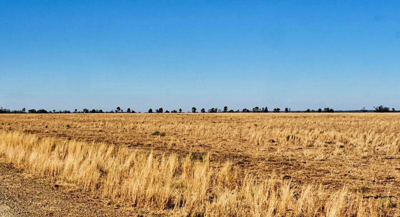 657 Curra Lane, Peak Hill, NSW, 2869 - Image 6