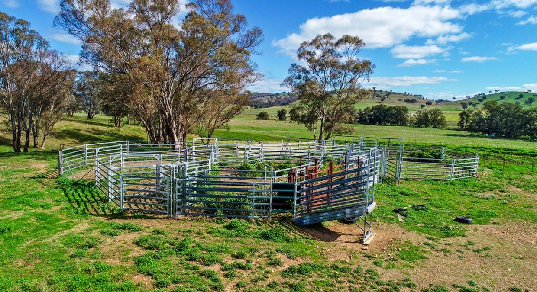 Goolma, NSW, 2852 - Image 20