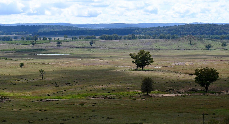 'Bunndarra And Towealgra' Digilah West Road, Dunedoo, NSW, 2844 - Image 9