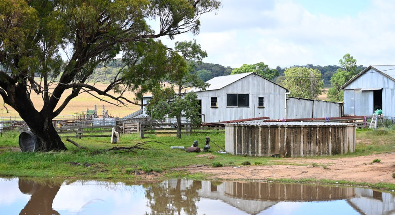 'Bunndarra And Towealgra' Digilah West Road, Dunedoo, NSW, 2844 - Image 5