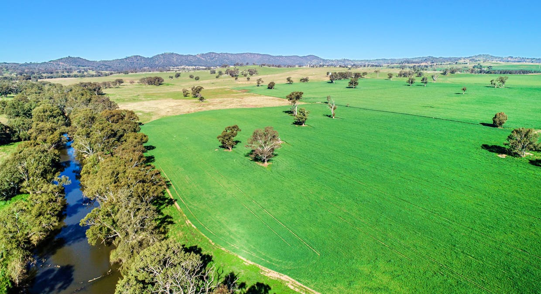 Goolma, NSW, 2852 - Image 9