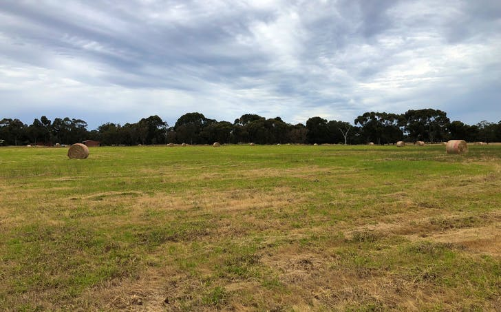 Lot 38 James Road, Capel, WA, 6271 - Image 1