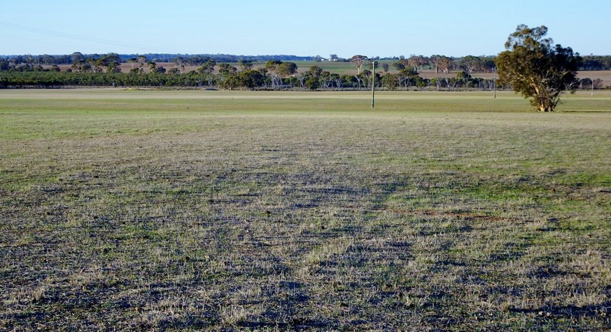 Lot 4395 Williams Kondinin Rd, Narrogin, WA, 6312 - Image 4