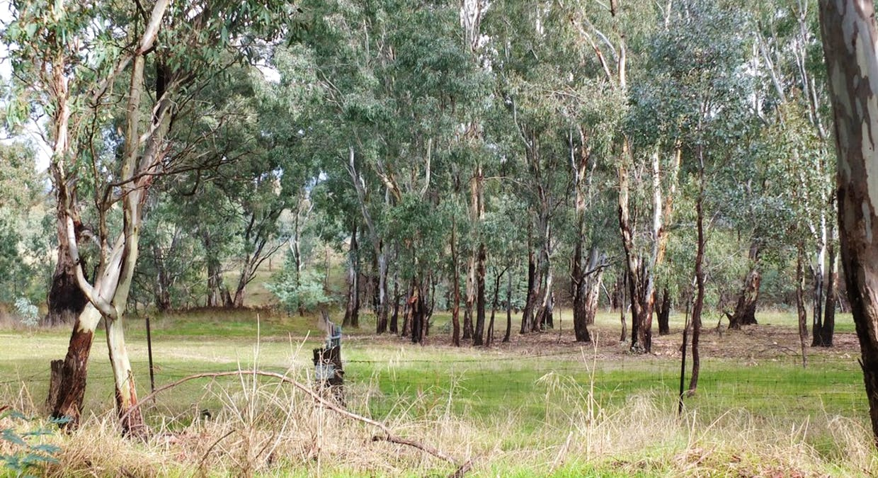 Lots 1 and 2 Tp 924163 Sunraysia Hwy, Stuart Mill, VIC, 3477 - Image 3