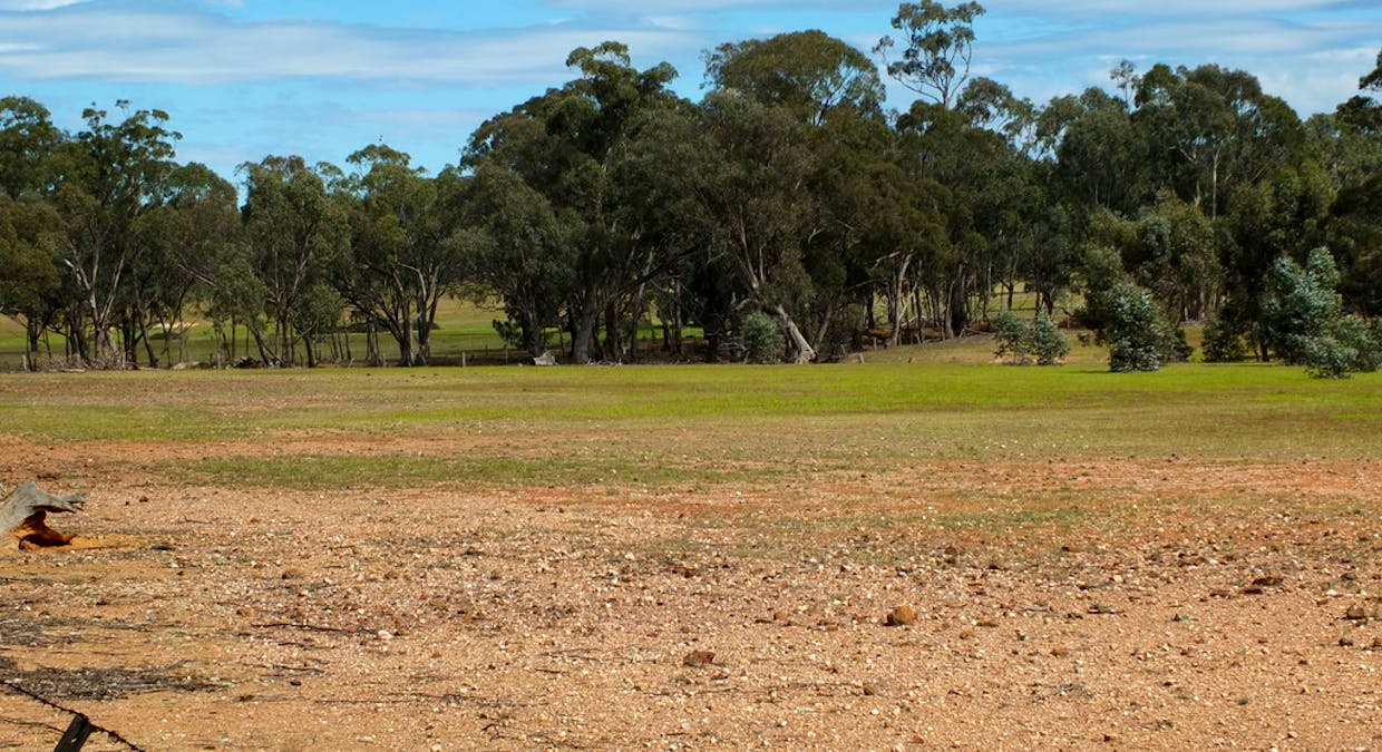 CA's 17 Dunolly-Stuart Mill Rd, Dunolly, VIC, 3472 - Image 7