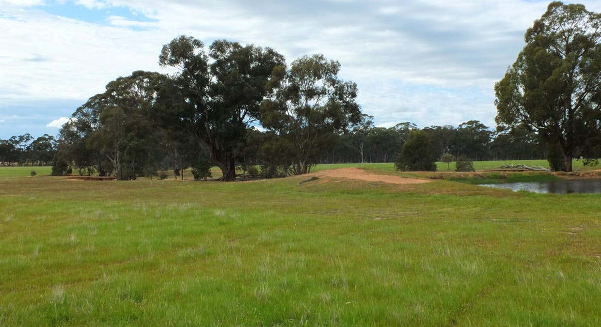 CA's 17 Dunolly-Stuart Mill Rd, Dunolly, VIC, 3472 - Image 1