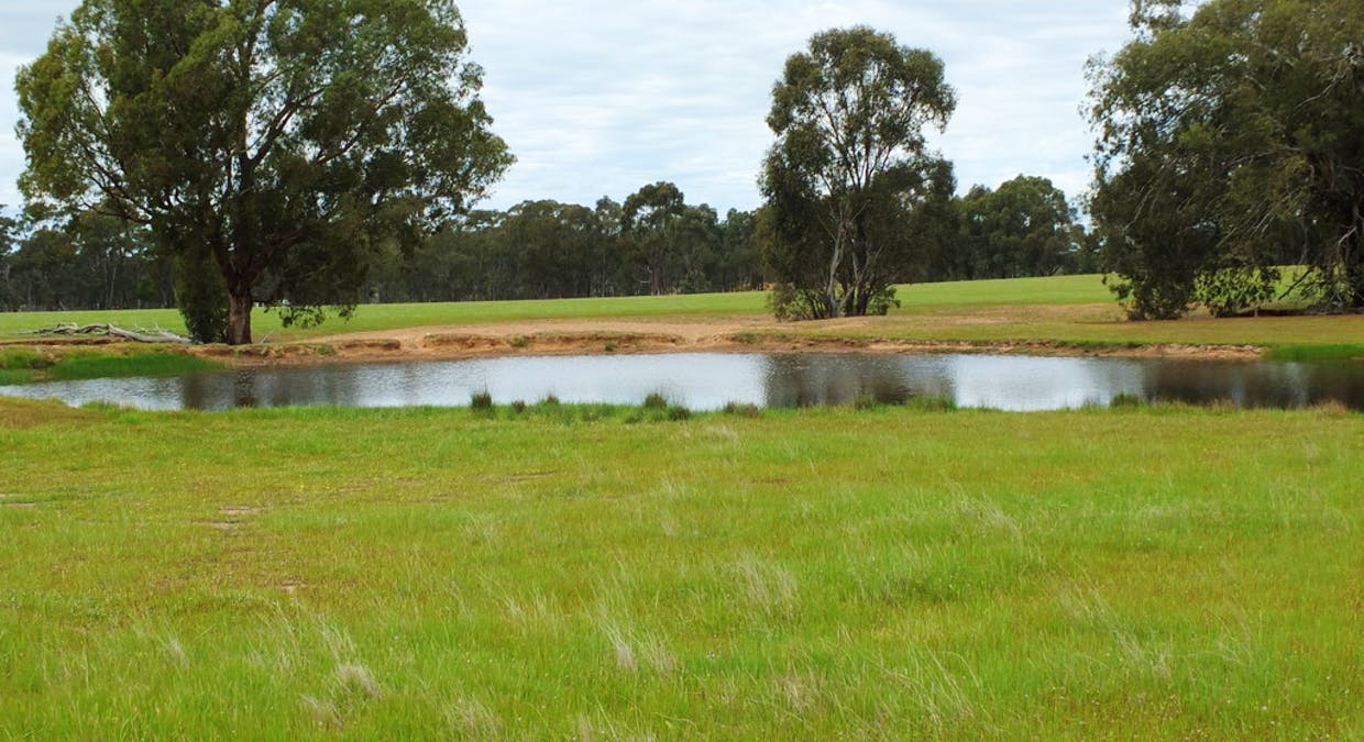 CA's 17 Dunolly-Stuart Mill Rd, Dunolly, VIC, 3472 - Image 9