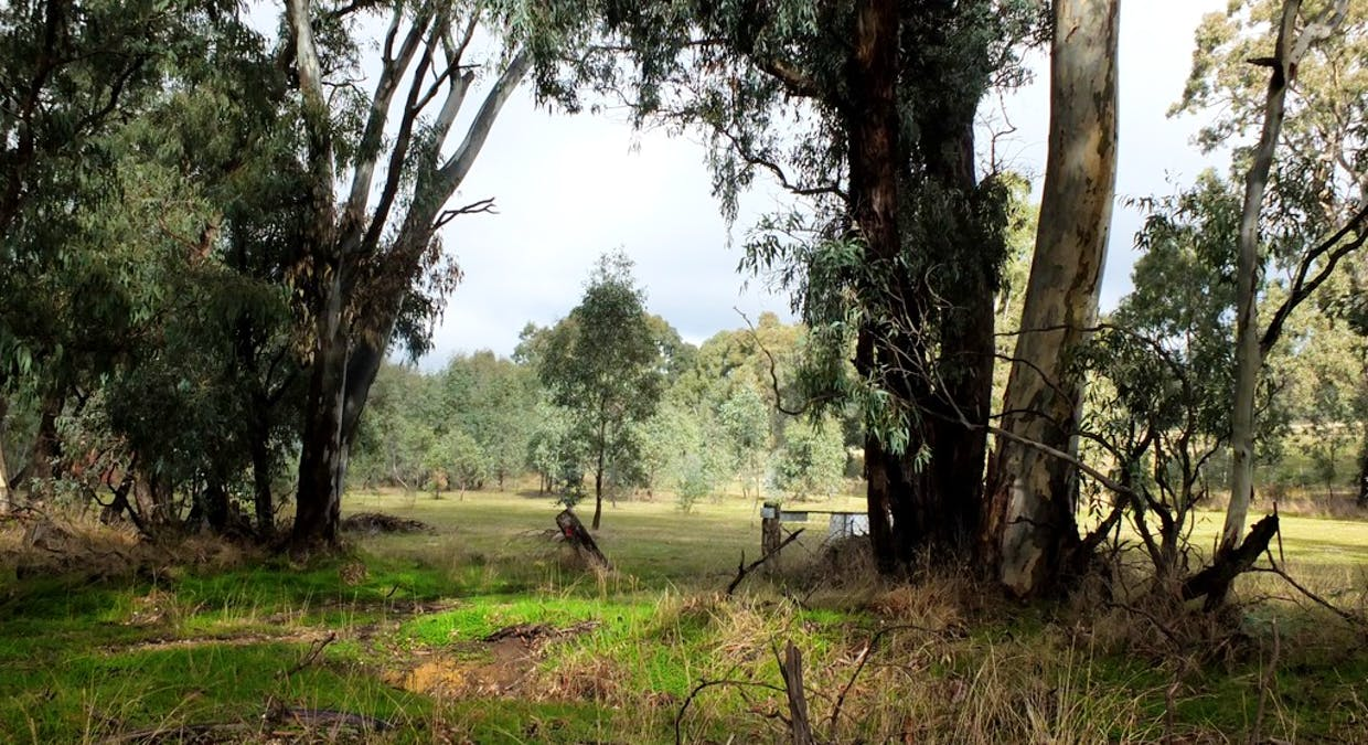 Lots 1 and 2 Tp 924163 Sunraysia Hwy, Stuart Mill, VIC, 3477 - Image 1
