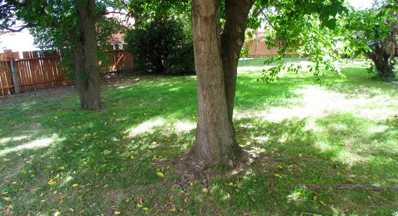 169 Rocket Street, Bathurst, NSW, 2795 - Image 7