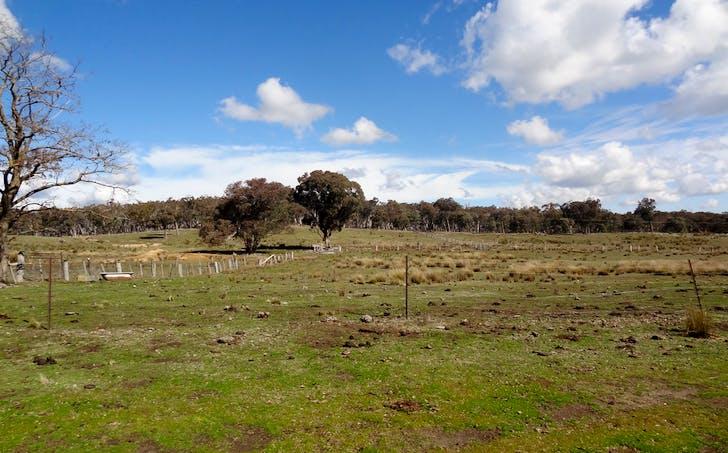 1807 Triangle Flat Road, Triangle Flat, NSW, 2795 - Image 1