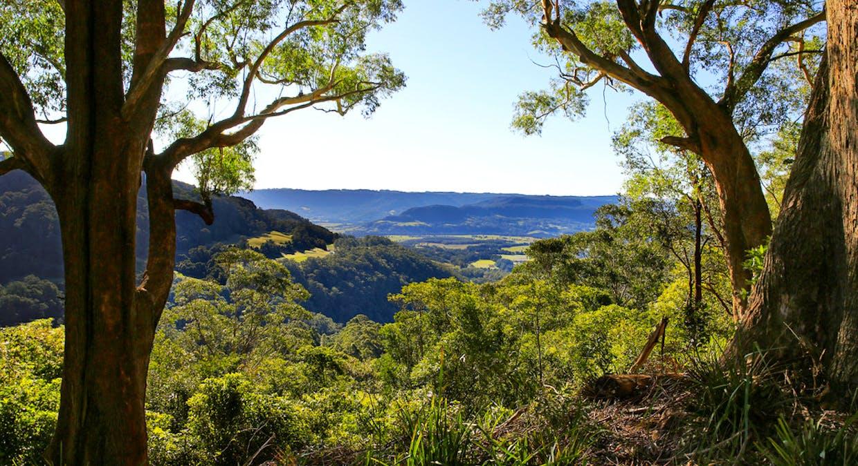 Berry, NSW, 2535 - Image 3