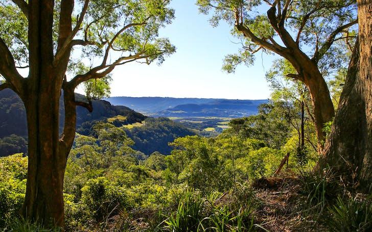 Berry, NSW, 2535 - Image 1
