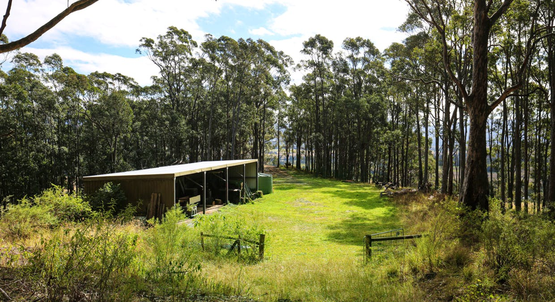Berry, NSW, 2535 - Image 24