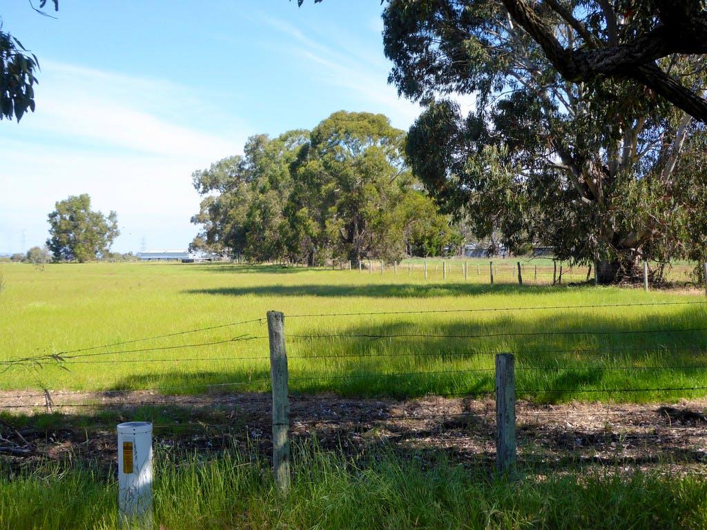 Pinjarra, Western Australia - Wikipedia