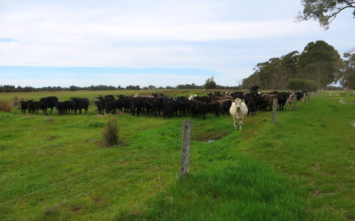 Lot 34 Hill Road, West Coolup, WA, 6214 - Image 1