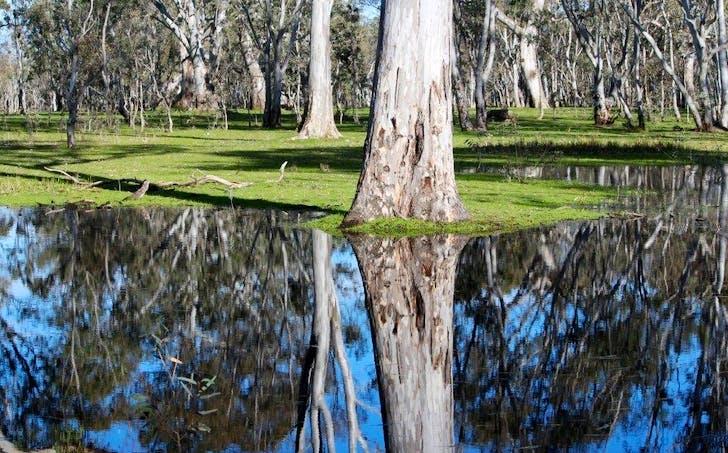 19A Byjuke Road, Lake Mundi, VIC, 3312 - Image 1