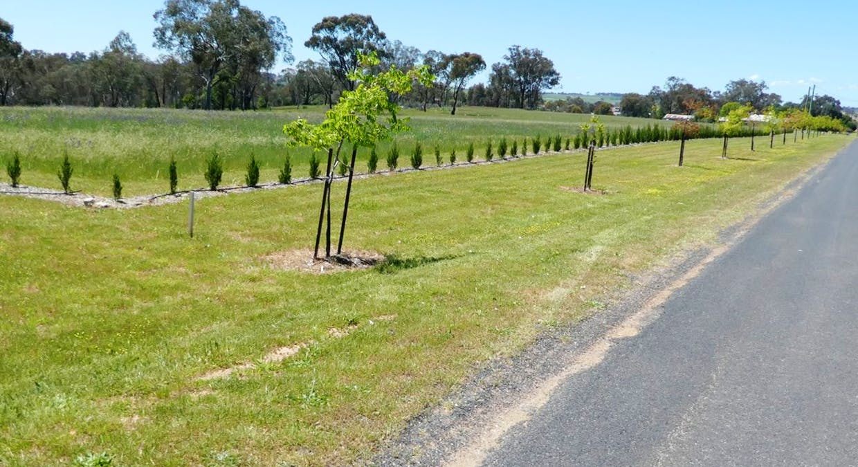 Lot 108 Queen Street, Molong, NSW, 2866 - Image 1