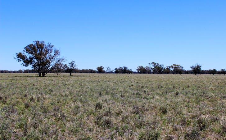 'Springbank' Narromine - Burroway, Dubbo, NSW, 2830 - Image 1