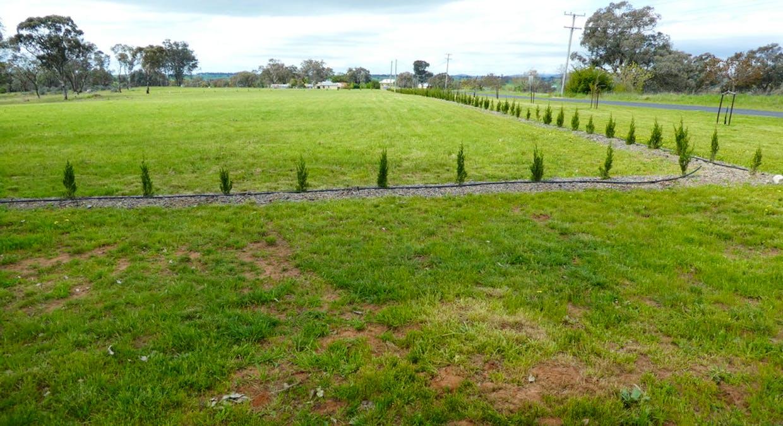 Lot 108 Queen Street, Molong, NSW, 2866 - Image 7