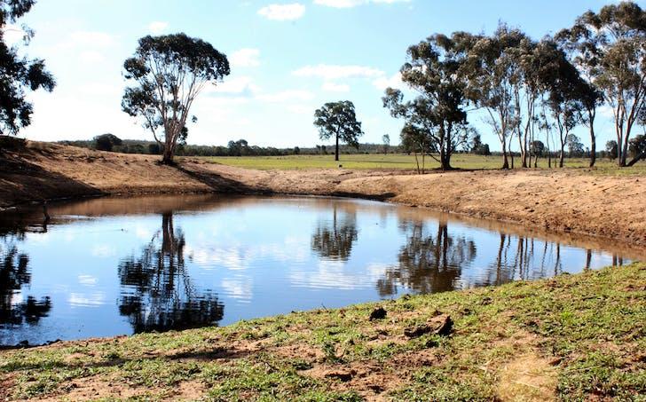188 Bullarook Rd, Coolah, NSW, 2843 - Image 1