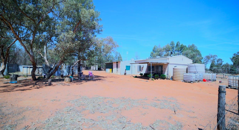 2653 Tantitha Road, Tomingley, NSW, 2869 - Image 8