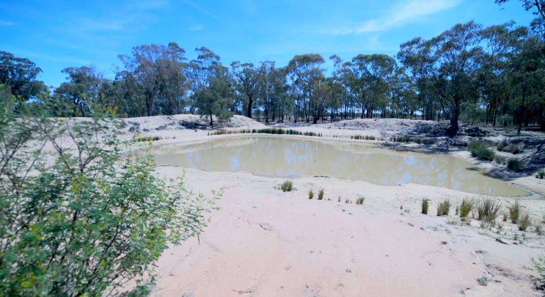2653 Tantitha Road, Tomingley, NSW, 2869 - Image 10