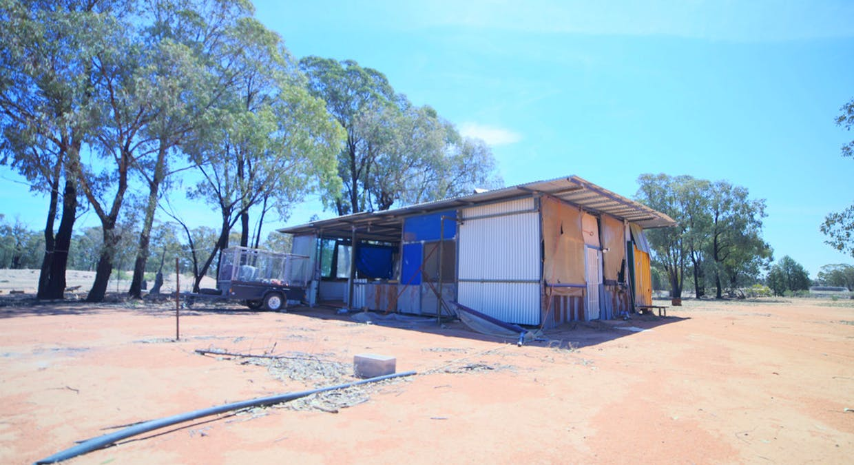 2653 Tantitha Road, Tomingley, NSW, 2869 - Image 9