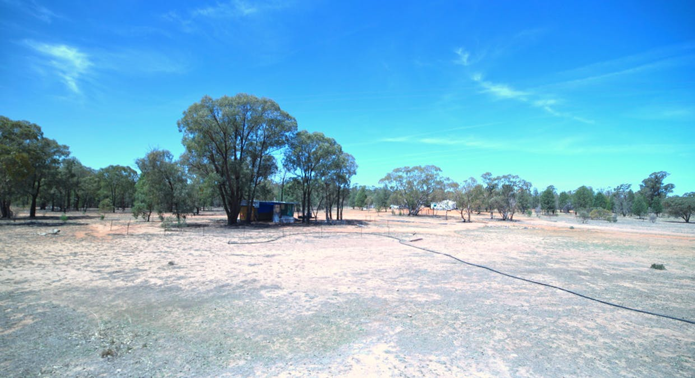 2653 Tantitha Road, Tomingley, NSW, 2869 - Image 11