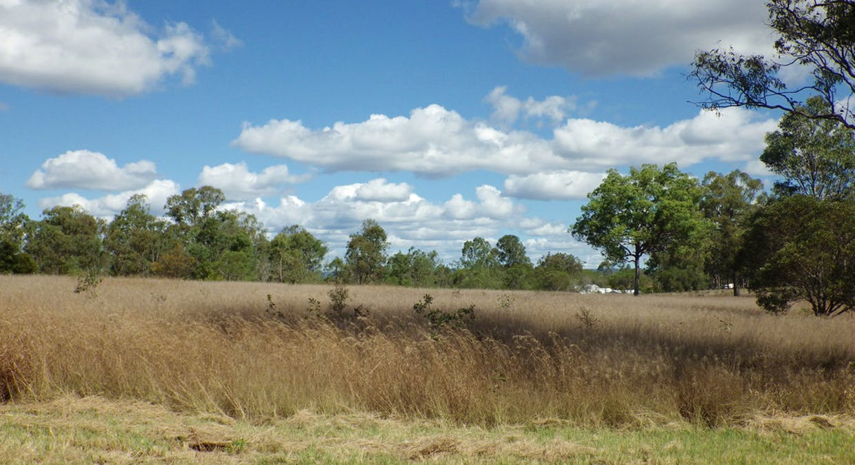 72 Messmate Drive, Miriam Vale, QLD, 4677 - Image 4