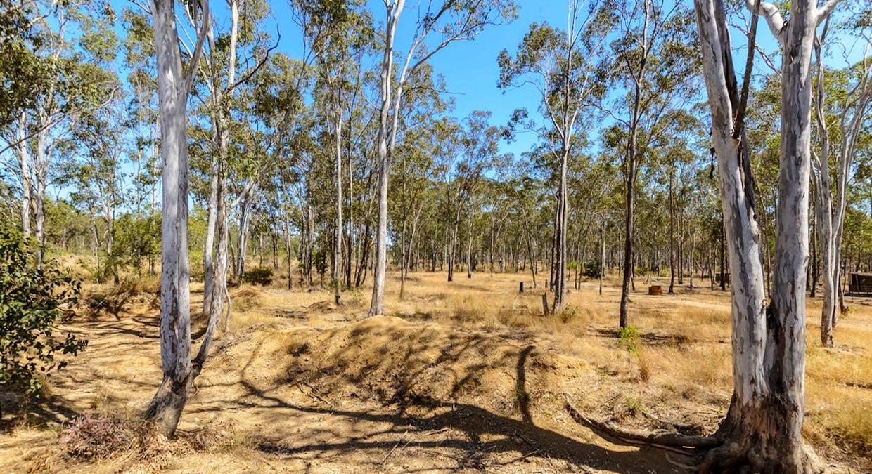 191 Darts Creek Road, Darts Creek, QLD, 4695 - Image 4