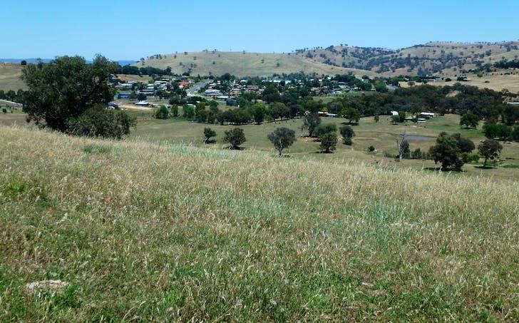29 Springflat Drive, Gundagai, NSW, 2722 - Image 1