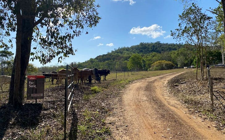 293 Griffiths Road, Balnagowan, QLD, 4740 - Image 1