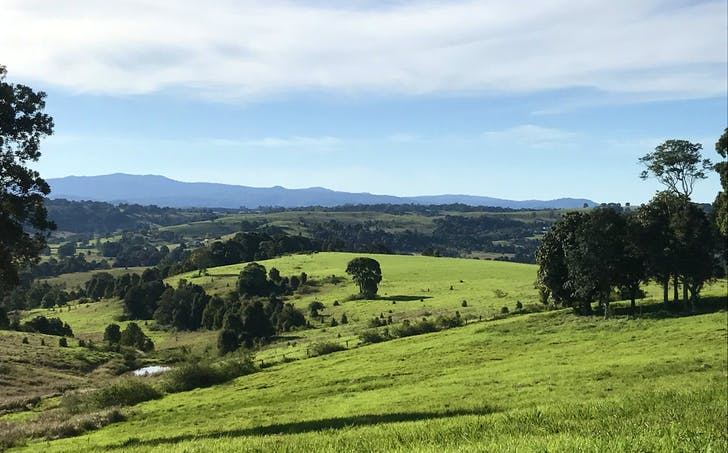 Lot 419 Spurfield Road, Mcleans Ridges, NSW, 2480 - Image 1