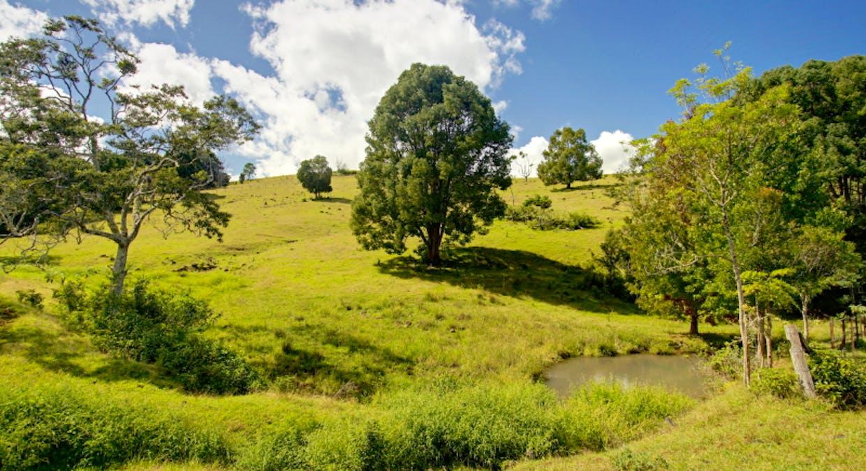 438 Rosebank Road, Rosebank, NSW, 2480 - Image 19