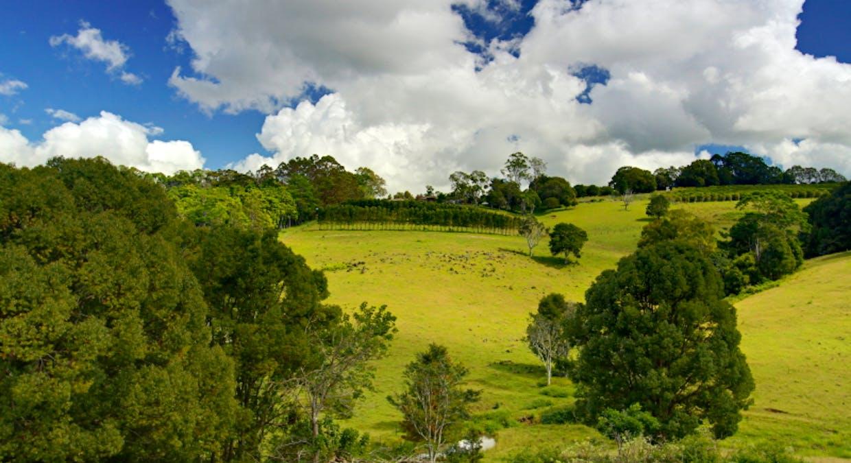 438 Rosebank Road, Rosebank, NSW, 2480 - Image 20