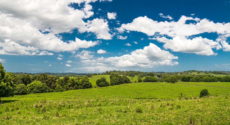 1545 Bangalow Road, Clunes, NSW, 2480 - Image 22