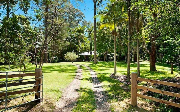 694 Wilsons Creek Road, Wilsons Creek, NSW, 2482 - Image 1