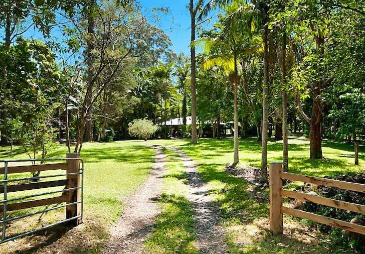 694 Wilsons Creek Road, Wilsons Creek, NSW, 2482