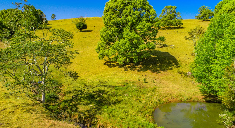 438 Rosebank Road, Rosebank, NSW, 2480 - Image 18